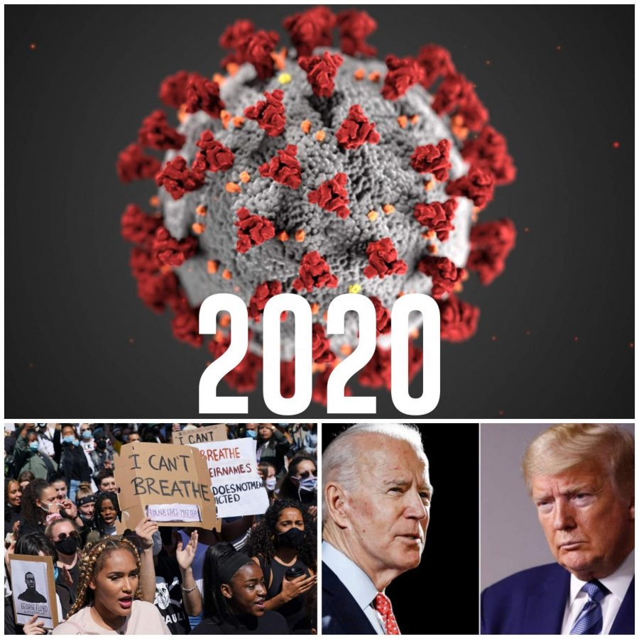 2020: A Look Back and a Look Ahead